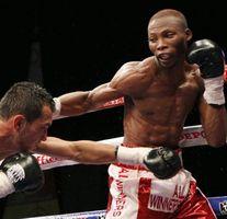 boxingwin02-1024x682