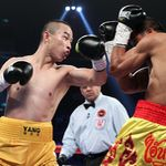March 7,  2015, Macau, China   ---    IK Yang (L) of China stops Patomsuk Pathompothong of Thailand in the 6th round of their 12-round IBF Welterweight eliminator to remain undefeated (18-0) at The Venetian Macao in Macau, China on Saturday night.     ---   Photo Credit : Chris Farina - Top Rank (no other credit allowed)  copyright 2015