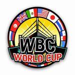 WBAフライ級・WBCバンタム級ランキングより